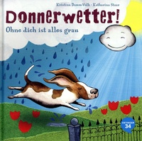 cover_dammvolk_donnerwetter