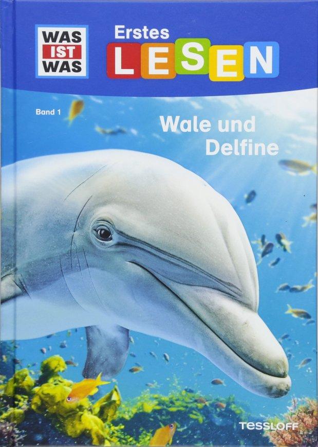 Erstes Lesen: Wale undDelfine