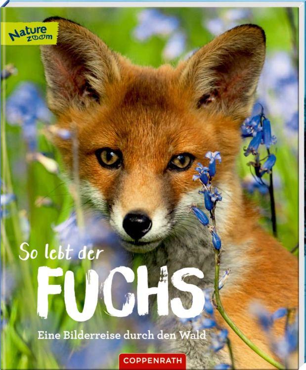 Sandra Noa: So lebt der Fuchs. Eine Bilderreise durch denWald